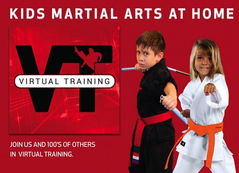 virtual martial arts classes